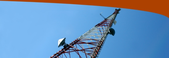 Trinity Field Services™ - Cell Tower Inspection, Cell Tower Inspections, Cellular Phone Tower Inspection